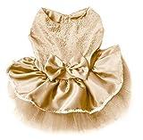 GODHL Haustier-Prinzessin Kleid Bow Blase Lace Rock Haustier Hund Kleidung Kostüm (Champagner, S)