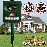 Harddo Solar Animal Repeller, Repellente ad ultrasuoni per Animali e Gatti, Impermeabile, per Cani, Gatti, Volpi, Topi, Uccelli, Animali dello spuntino