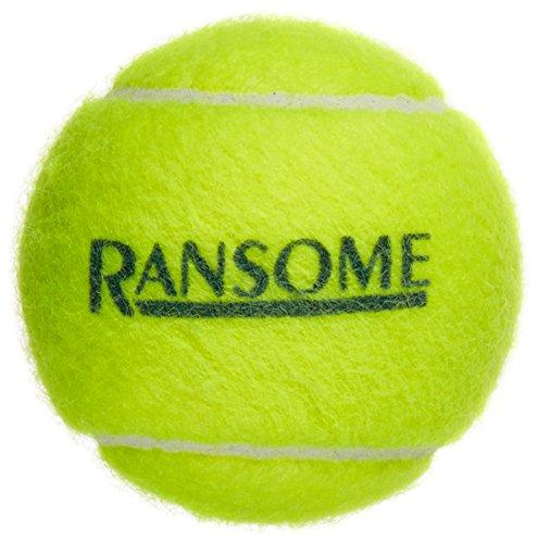 Ransome Sporting Goods - Pelotas tenis pack 12, color