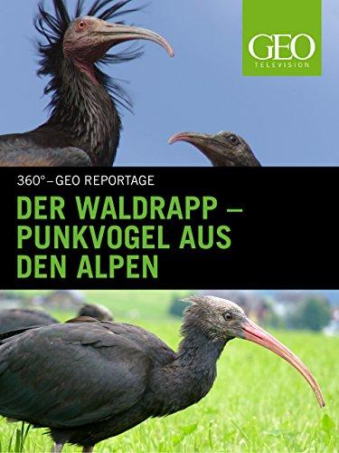 Der Waldrapp - Punkvogel aus den Alpen (Ein Vogel In Der Hand)