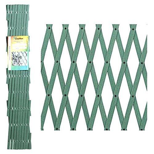 Papillon 8091535 Celosia PVC Verde Extensible 2x1 Metros.