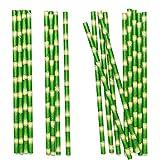 Alxcio Papier Pailles à Boire en Bambou de 19.7 cm Pailles écologiques Biodégradables Décoration pour Anniversaire, Mariage, Noël, Douche de Bébé