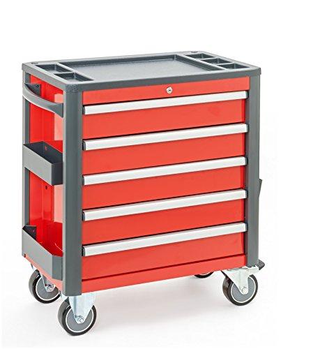 Preisvergleich Produktbild animalmarketonline Schrank Cart Trolley-Koffer Werkzeugkoffer Instrumente Werkzeug Profi Florenz