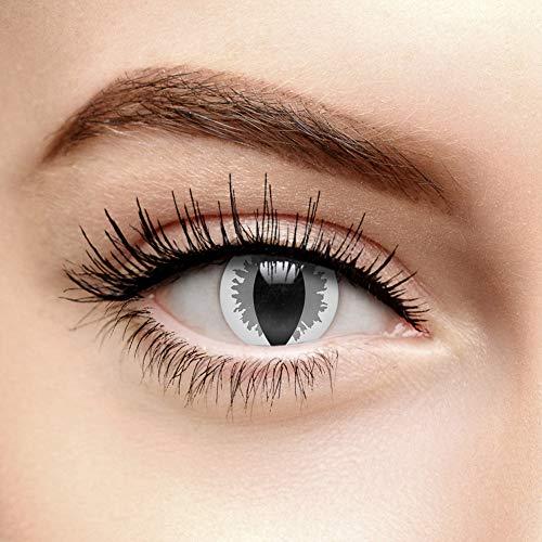 Chromaview Nebel Drachen Farbige Kontaktlinsen Ohne Stärke Grau (30 Tage)