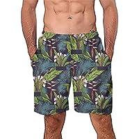 Luckycat Bañador Hombre Chico Playa Poliéster Pantalon Corto Hombre Deporte  Secado Rápido Bañadores Natacion Ligero Moda e97d2694123