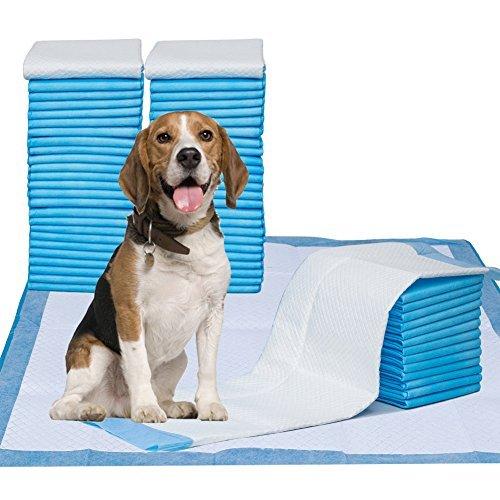 Petphabet Pet Training Puppy Pads, 86,4x 71,1cm XXL-Large, Ultra saugfähig-Alle Tag Premium Hund Pads-20Zählen, 42Zählen, 42-Count -
