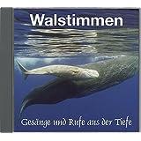 Walstimmen: Gesänge und Rufe aus der Tiefe. 15 Wal- und Delfinarten