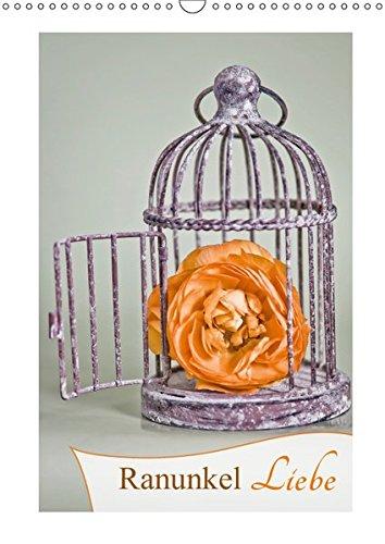 Ranunkel-Liebe (Wandkalender 2019 DIN A3 hoch): Die vielseitige Ranunkel von ihrer schönsten Seite (Monatskalender, 14 Seiten ) (CALVENDO Natur)