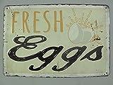 Nostalgie Blechschild, Frische Eier, Fresh Eggs, Gastronomie Schild 20x30