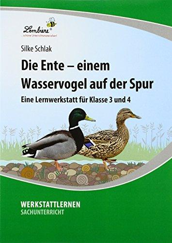 Die Ente - einem Wasservogel auf der Spur (PR): Grundschule, Sachunterricht, Klasse 3-4