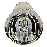 Etouch RLC-079Projektor Original Bare Leuchtmittel für ViewSonic PJD7820HD