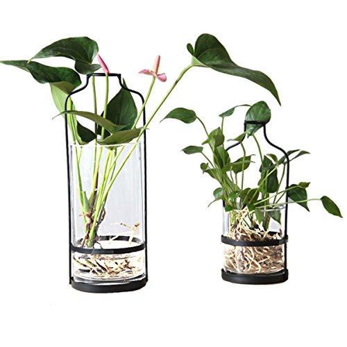 Metall Eisen Rack Blumenhalter mit Glas Wasserpflanze Vase Topf Pflanzer für Wohnzimmer Bar Büro (B Stil)