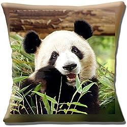 "BONITA oso panda gigante comer Bambú Foto Estampada - 16"" (40cm) Funda De Cojín"
