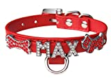 Ledustra Hundehalsband personalisiert mit Strass Namen Gr. XS in 10 Farben (Rot)