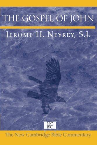 The Gospel of John (New Cambridge Bible Commentary)