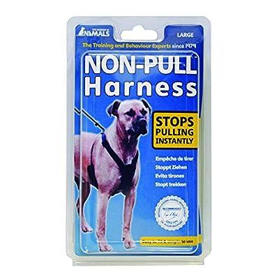 Coa Non-pull Harness Black