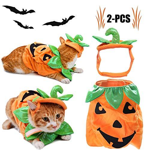 HJ&WL Katzen Halloween Kleidung, Katzen-Kleid-Kürbis-Entwurfs-lustige Haustier-Kleidung Katzen-Halloween-Kostüm mit Kürbis - Kürbis Pooch Hunde Kostüm