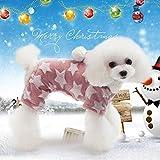 Idepet Caldo Cappotto Cane Gatto con Cappuccio in Cotone Maglione Abbigliamento per Piccoli Cani Cucciolo Teddy Poodle Chihuahua Kitty Gattino
