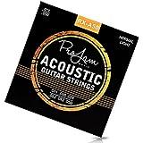 ProJam Gitarrensaiten – Premium Gitarrensaiten für Westerngitarre und Akustikgitarre – brillanter Klang – Phosphor Bronze umwobene Stahl-Saiten – 6 Saiten Set