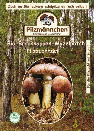 Bio Braunkappe Myzelpatch - Pilze selber züchten