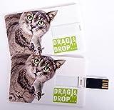 Witziger USB Stick im Visitenkartenformat, Scheckkarte, Kreditkarte, 4 GB, Katze mit Maus im Maul