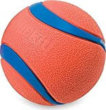 Chuckit Ultra Ball, Durable High Bounce Rubber, Launcher Compatible, 2 Pack, Medium