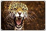 Jaguar Format: 80x60 cm Bild auf PVC-Plane/Banner, Hochwertiger XXL Kunstdruck als Wandbild inkl. Ösen!!