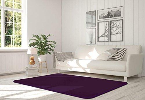 c Solid Velvet Teppich Schlafzimmer & Living Weicher Teppich, aubergine, 60 x 110cm ()