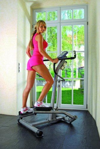 Horizon Fitness Side Stepper Dynamic 2, silber / grau, 100533 - 3