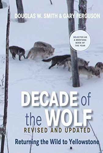Decade of the Wolf, Revised and Updated: Returning The Wild To Yellowstone by Douglas Smith (2012-04-17)