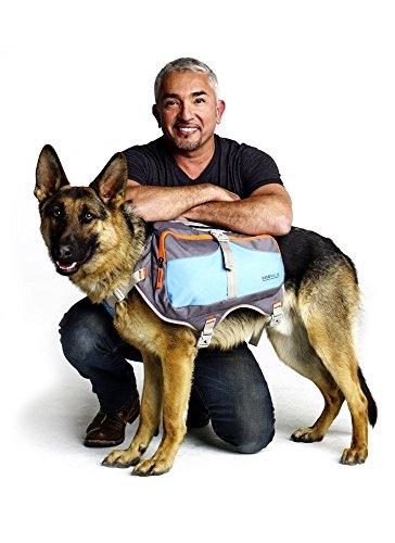 Cesar Millan Dog BackpackTM - Hunderucksack des Hundeflüsterers Cesar MillanTM
