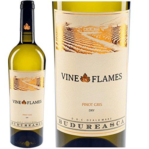 Flame Vine (The Vine in Flames Pinot Gris 2016   Trockener Winzerwein aus Rumänien 13,4% - Pinot Grigio – Grauburgunder   Dealu Mare, DOC – CT)