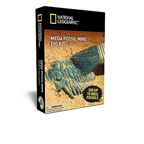 Méga Mine de Fossiles – Déterre 15 Véritables Fossiles avec NATIONAL GEOGRAPHIC