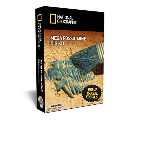 mega-fossil-mine-dig-up-15-real-fossils-with-national-geographic