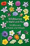 Wildblumen in Wald und Flur: Wildflowers of Fields and Woods