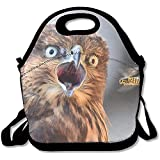 Insulated Lunch Bag Bento Lunch Bag, Freezable Big Lunch Bag For Women Funny Owl Bees Flying Surprised