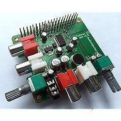 Tarjeta de sonido para Raspberry Pi con micrófono incorporado