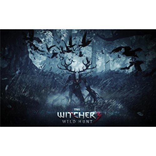 The Witcher 3 Wild Hunt (38inch x 24inch / 96cm x 60cm) Silk Print Poster - Soie Affiche - D4EBD9
