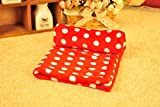 Global- Winter Doghouse Matte / Lamm Kaschmir Blanket / Pet Blanket Quilt / Puppies Decke Katze Steppdecke / Widerstand zu beißen starke dicke Baumwolle Pad ( größe : 62*46cm )