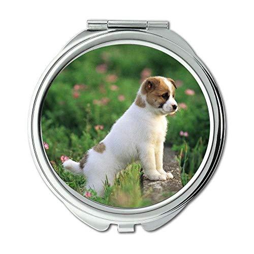 Specchio, specchietto, amante dei cani Malamute in Alaska, specchio tascabile, ingrandimento 1 x 2X
