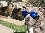 Doggles ILS Hunde-Sonnenbrille Extra Klein Schwarz