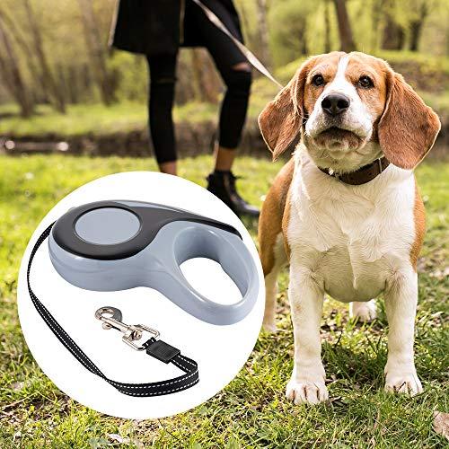 Meipa Zeit 360 ° verwickelungsfreie, hochbelastbare, einziehbare Hundeleine, 5 m (16 Fuß) Starkes, strapazierfähiges Nylonband, Einhand-Bremspausensperre PS206 -