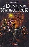 le donjon de naheulbeuk tome 4 chaos sous la montagne