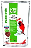 SERA Koi Aliment pour Jeunes carpes koï Toute Saison avec probiotique