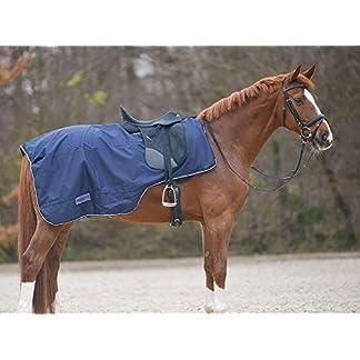Amesbichler 100247-60Thinner Saddle Waterproof Dark Blue Size warmblut| Horse Blanket Amesbichler 100247-60Thinner Saddle Waterproof Dark Blue Size warmblut| Horse Blanket 51SrtG0FvUL