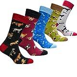 socks n socks-Männer 5 pk Luxus Lustig Bunte Baumwolle Neuheit Hund Socken Geschenkbox Einheitsgröße