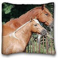 Decorativo Quadrato Throw Pillow Case animali cavallo vapore S Food Fence 18x 18in due lati - Fence Cleaner