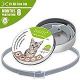 Dewel Zeckenhalsband, Zecken Halsband mit 8 Monate Kontrolle Schutz für Kleine Hunde und Katzen, Wasserfest,Anti-Zecken und Anti-Flöhe