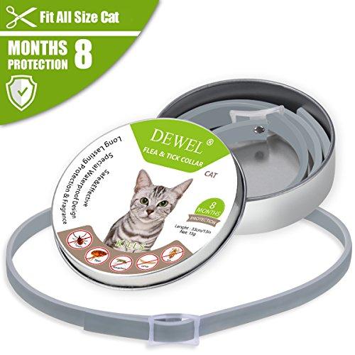 DEWEL Flöhe Zecken Halsband für Kleine Hunde und Katzen,8 Monate Kontrolle Schutz und Verstellbar Größe