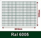 BBT@/1 x Doppelstabmatte Gittermatte Zaunfeld 6/5/6 Grün Höhe 163cm Breite 250cm ohne Pfosten
